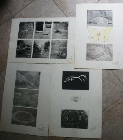 Gravure Tilson - 15 prints on four sheets, 1 hand coloured