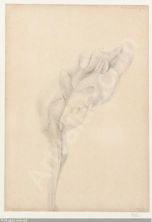 Lithographie De Bruyckere - Aanéén-genaaid