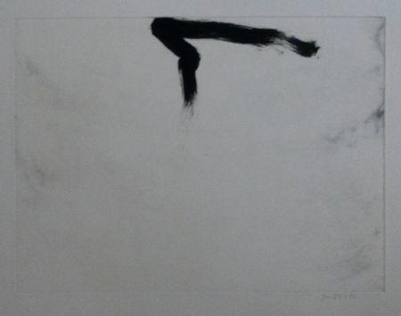 Eau-Forte Et Aquatinte Bird - Abstract 11
