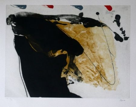 Eau-Forte Et Aquatinte Bird - Abstract 7