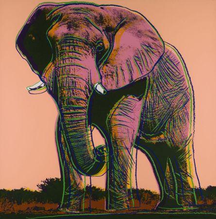 Sérigraphie Warhol - African Elephant (FS II.293)