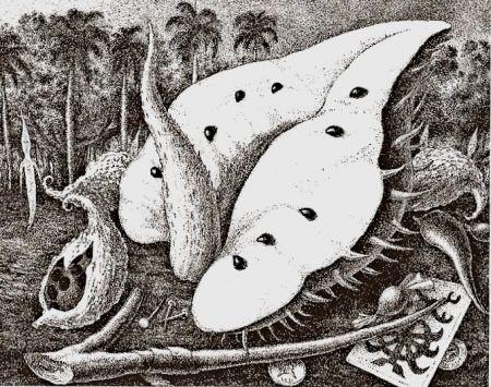 Gravure Alejandro - Aguamor de Candiafuertes II