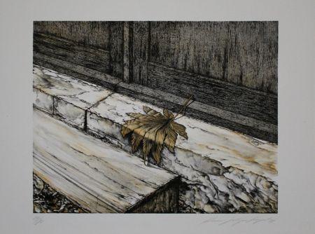 Lithographie Siegert - Ahornblatt / Maple Leaf