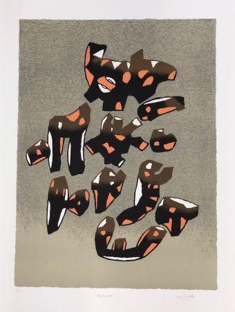 Lithographie Le Witt - Album internacional