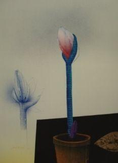 Lithographie Wunderlich - Amaryllis