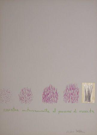 Sérigraphie Mattiacci - Assistere intensamente al processo di crescita