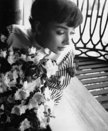Photographie Willoughby - Audrey Hepburn window