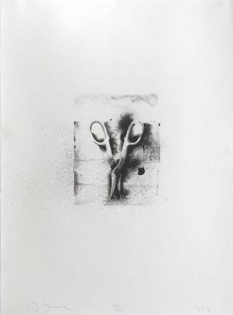 Lithographie Dine - Aus