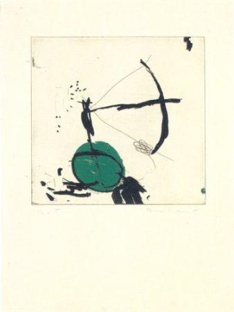 Gravure Riera I Aragó - Avió petit roda verda
