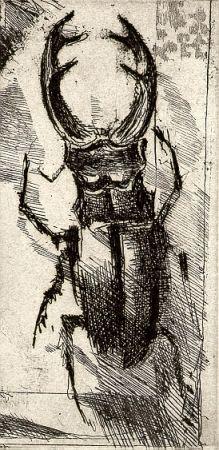 Livre Illustré Calandri - Ballades et Rondeaux du Testament Villon