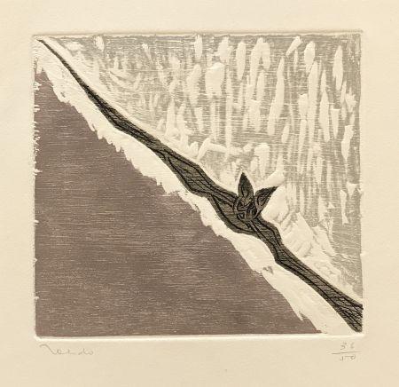 Gravure Toledo - Bat in Flight