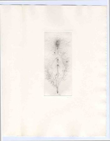 Livre Illustré Bellmer - Bataille (Georges). Madame Edwarda.