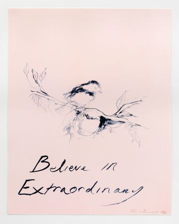 Lithographie Emin - Believe in Extraordinary