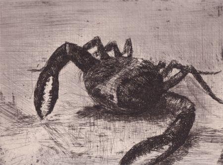 Livre Illustré Zamorano De Biedma - Bestiaire