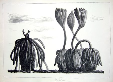 Lithographie Lionni - Betula tormens