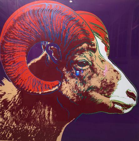 Sérigraphie Warhol - Bighorn Ram Tp (Fs Ii.302)