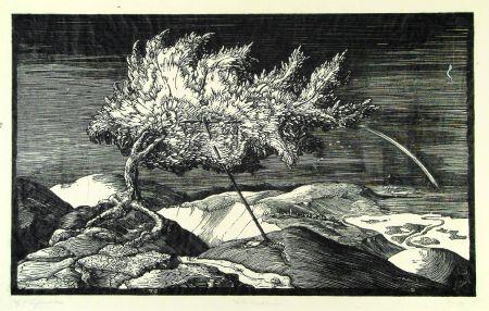 Gravure Sur Bois Schönleber - Blütenbaum im Donautal (Flowering tree in the Danube valley)