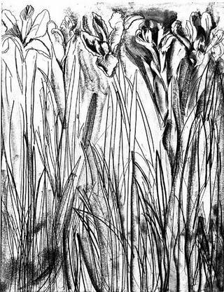 Gravure Dine - Black & White Flowers I