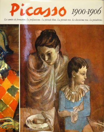 Livre Illustré Picasso - Catalogue raisonné de l'oeuvre peint. 1900, 1901, 1906: Pierre Daix - 1902 à 1905: Georges Boudaille.