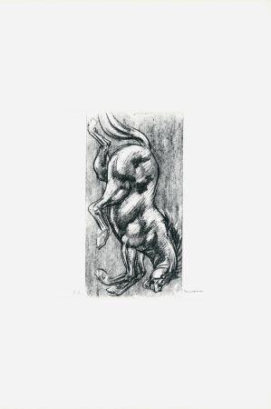 Lithographie Messina - Cavallo