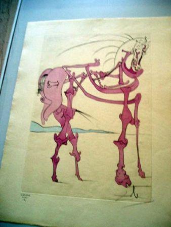 Gravure Dali - Cheval En Rose (Quevedos Visioner)
