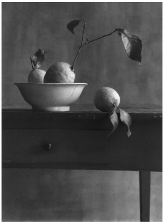 Photographie Anonyme - COIGNY Christian (1946).  Nature morte aux citrons