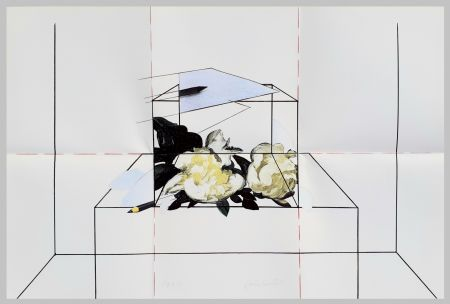 Lithographie Paolini - Come è / Come se