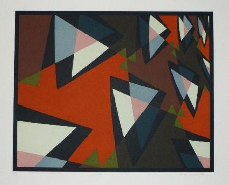 Lithographie Hinterreiter - Composition