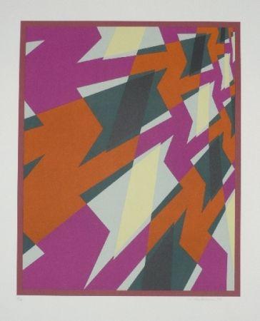 Lithographie Hinterreiter - Composition 4
