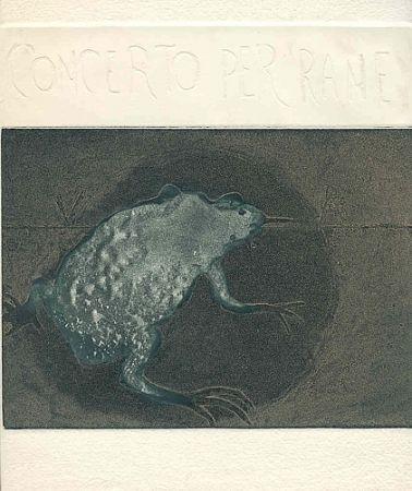 Livre Illustré Guarienti - Concerto per rane