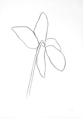 Lithographie Kelly - Cyclamen IV