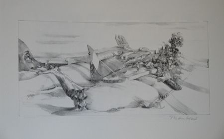 Lithographie Thomkins -