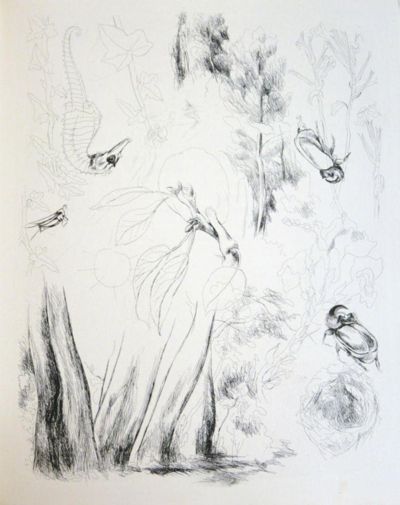 Livre Illustré Levy - De la nature (De Rerum Natura)