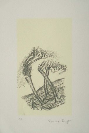 Lithographie Ernst - Desert plisses