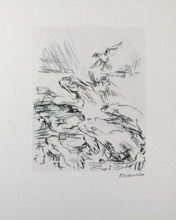 Pointe-Sèche Kokoschka - Die Frösche / The Frogs