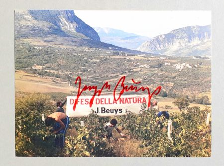 Offset Beuys - Difesa della natura
