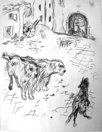 Livre Illustré Bonnard - Dingo