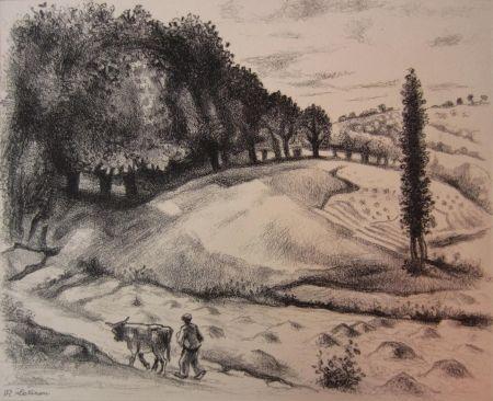 Gravure Lotiron - Dix estampes originales