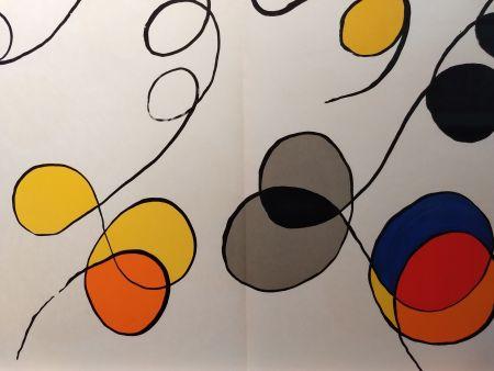 Livre Illustré Calder - DLM 173