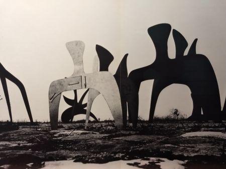 Livre Illustré Calder - DLM 190