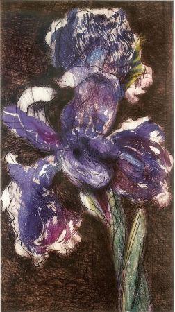 Lithographie Kentridge - Dutch Iris II