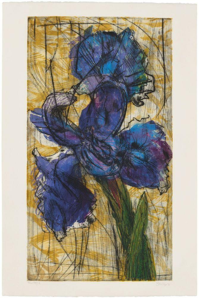 Eau-Forte Et Aquatinte Kentridge - Dutch Iris (Trial Proof B)