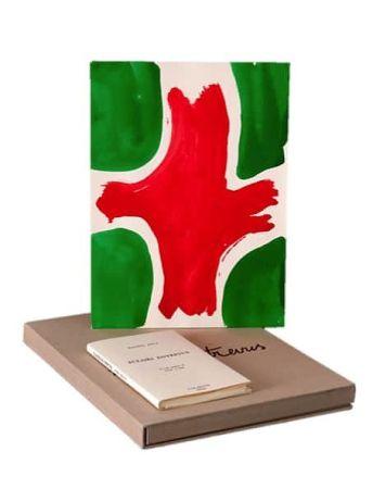 Livre Illustré Viallat - ECLAIRS ENTREVUS, 1991