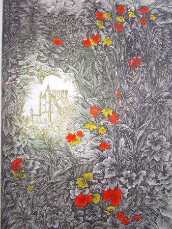 Lithographie Ayuso - El Alcazar