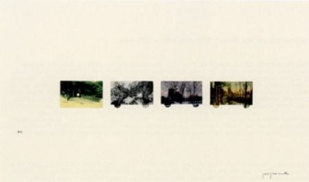 Lithographie Perejaume - El bosc a casa-2
