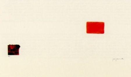 Lithographie Perejaume - El bosc a casa-3