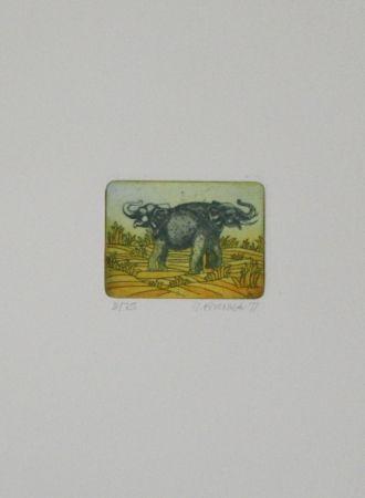 Eau-Forte Et Aquatinte Franke - Elefanten