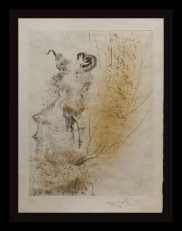 Gravure Dali - Faust Tete de Veau