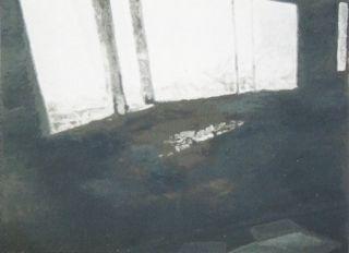 Sérigraphie Tuymans - Fenêtres