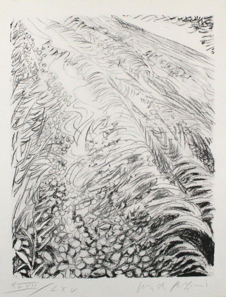 Lithographie Fazzini - Field